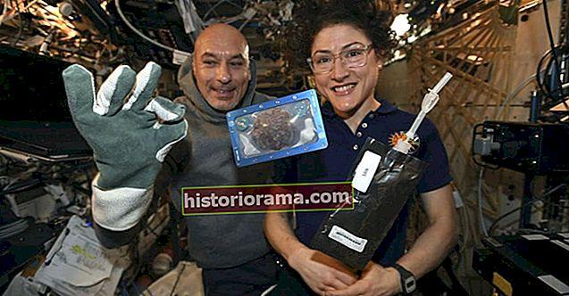 Astronauti objevují, jak upéct perfektní cookie ve vesmíru