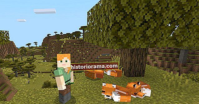 Як приручити лисицю в Minecraft