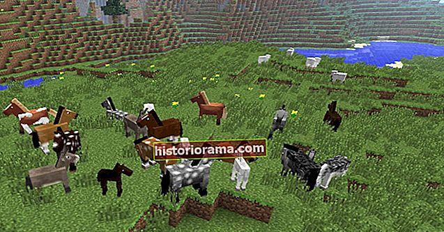 Hvordan man opdrætter heste i Minecraft