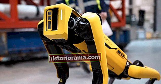 Спот-робот-собака тепер доступний для загального продажу, але це недешево