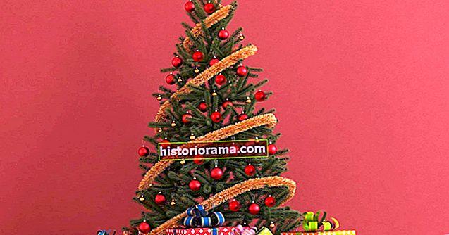Váš vánoční stromek může být jasný, ale můžete ho udělat chytře