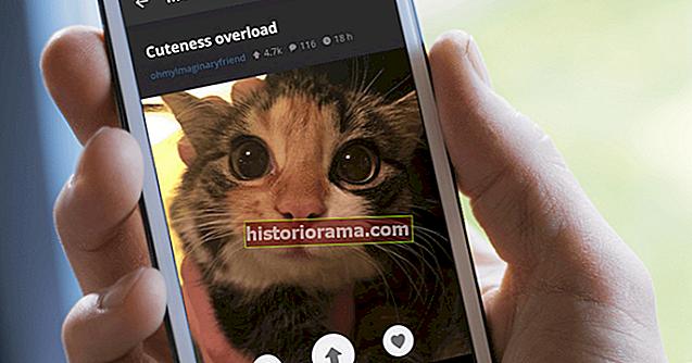 Платформа обміну зображеннями Imgur додає соціальні функції до мобільних додатків, настільних ПК