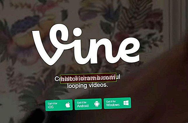 Найкращі акаунти Vine для підписання