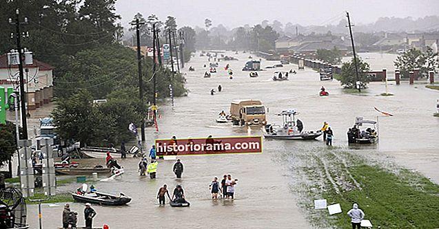 """Facebook порівнює пожертви на відновлення урагану """"Харві"""""""