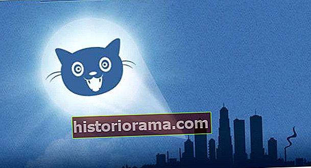 """Як встановити """"кішковий сигнал"""" Інтернет-ліги захисту у своєму блозі Tumblr"""